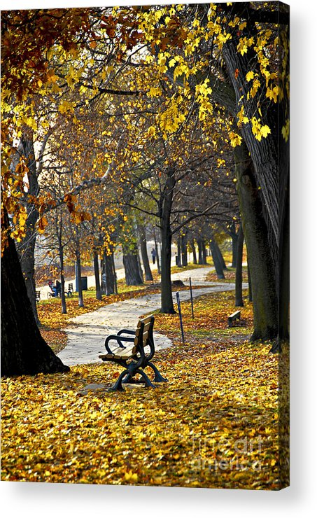 Park Acrylic Print featuring the photograph Autumn Park In Toronto by Elena Elisseeva