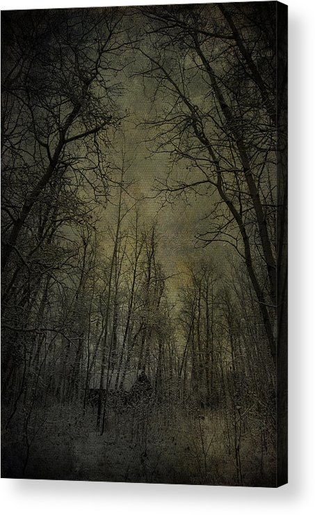 Jerry Cordeiro Photographs Acrylic Print featuring the photograph Cabin Fever by The Artist Project