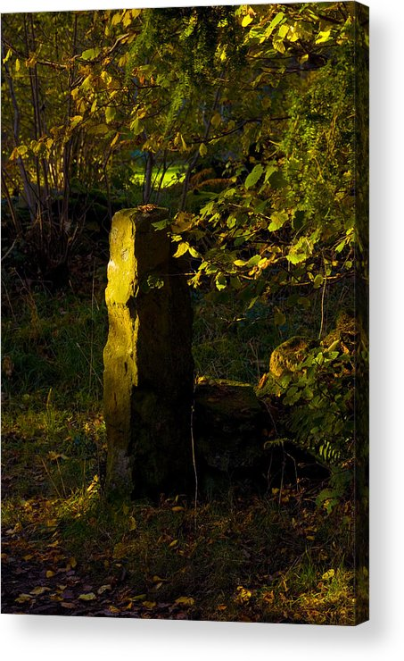 Woodland In Autum Acrylic Print featuring the photograph Forgotten Gatepost by Peter Jenkins