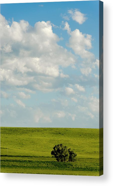 Americas Acrylic Print featuring the photograph Lone Trees by Roderick Bley