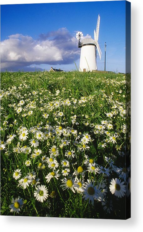 County Down Acrylic Print featuring the photograph Millisle, County Down, Ireland by Richard Cummins