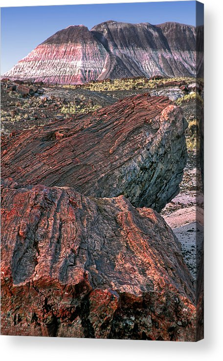 Petrified Forest National Park Acrylic Print featuring the photograph Petrified Forest National Park by Dave Mills