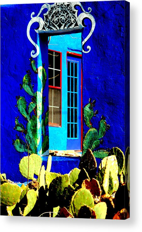 Window Acrylic Print featuring the photograph Prickly View by David Pike