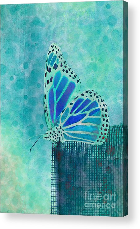 Butterfly Acrylic Print featuring the digital art Reve De Papillon - S02a2 by Variance Collections