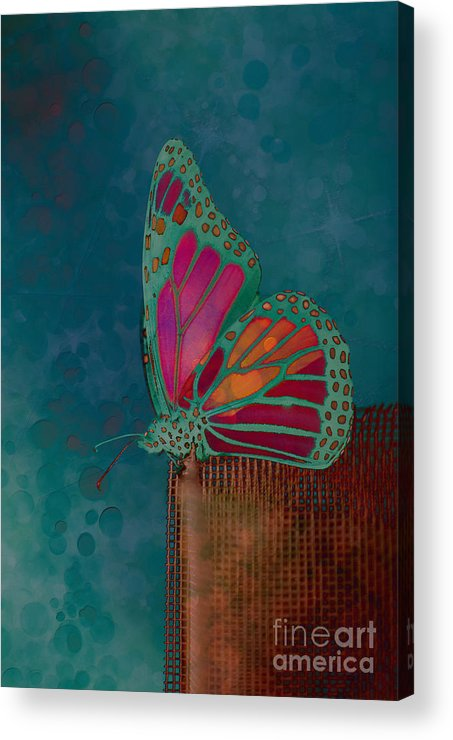 Butterfly Acrylic Print featuring the photograph Reve De Papillon - S04bt02 by Variance Collections