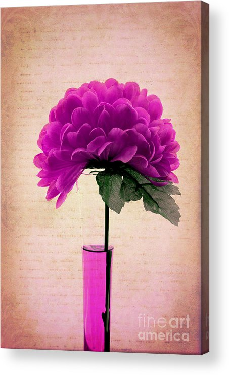 Violet Acrylic Print featuring the photograph Violine by Aimelle