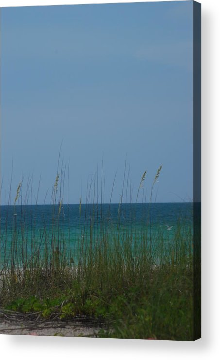 Landscape Acrylic Print featuring the photograph Holmes Beach Florida 2 by Lisa Gabrius