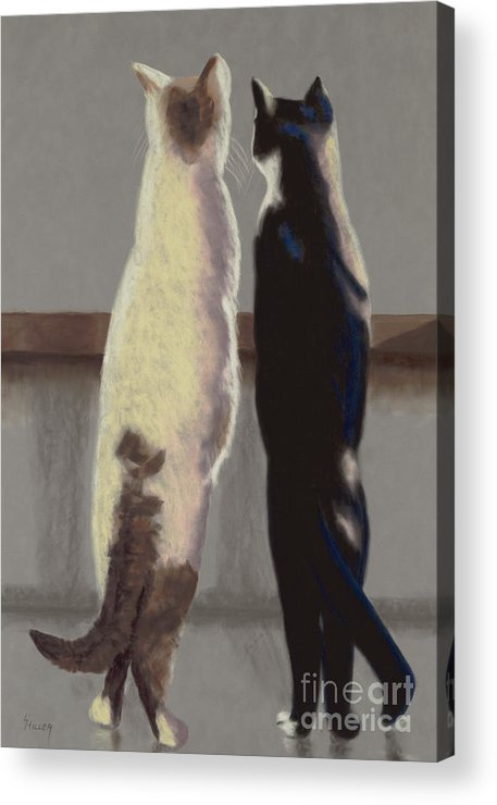 Cat Acrylic Print featuring the painting A Bird by Linda Hiller