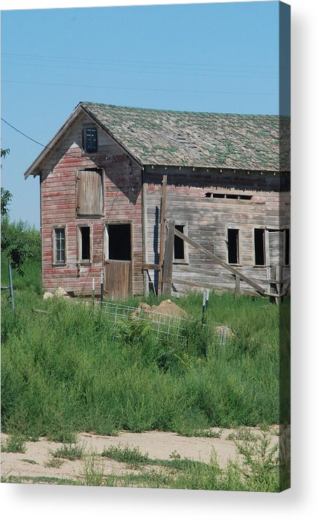 Farm Acrylic Print featuring the photograph A Drive In The Country by Margaret Fortunato
