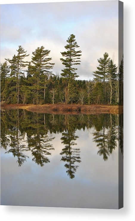 Tree Lined Lake Acrylic Print featuring the photograph Autumn Reflector by Kathleen Sartoris