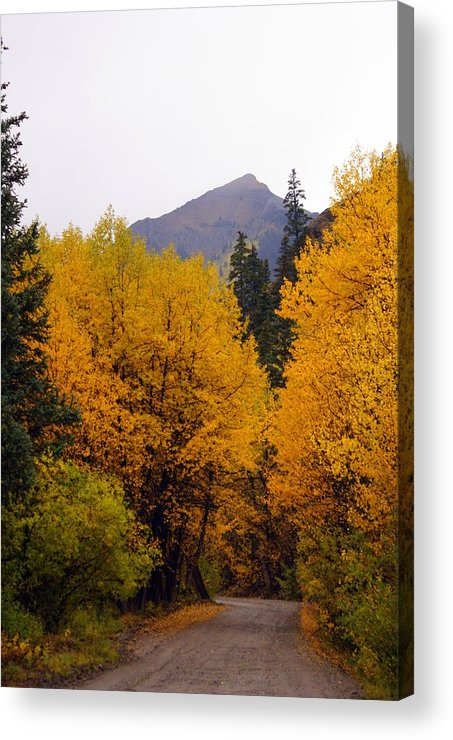 Fall Colors Acrylic Print featuring the photograph Colorado Road by Marty Koch
