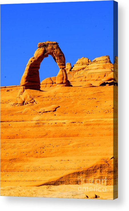 Arches Acrylic Print featuring the photograph Delicate Arch by Dennis Hammer
