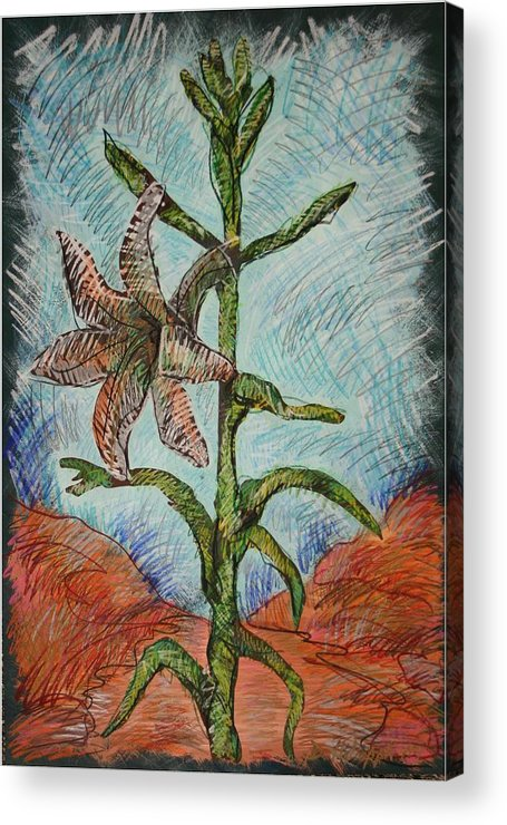Lily Acrylic Print featuring the painting Desert Lily by Dodd Holsapple
