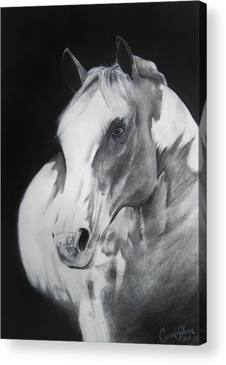 Horse Acrylic Print featuring the drawing Equestrian Beauty by Carrie Jackson