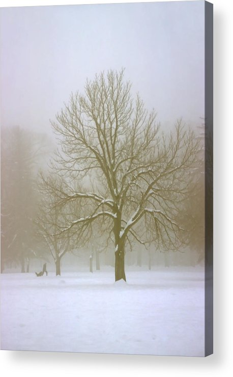 Nature Acrylic Print featuring the photograph Foggy Morning Landscape 7 by Steve Ohlsen