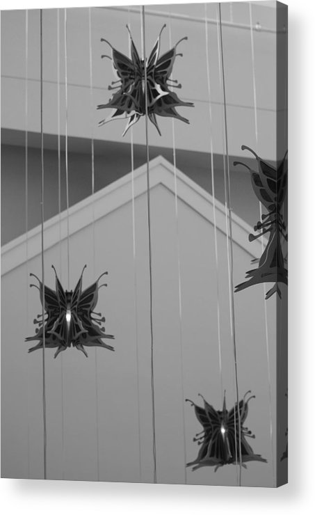 Architecture Acrylic Print featuring the photograph Hanging Butterflies by Rob Hans