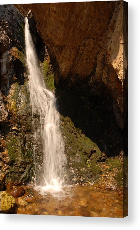 Waterfall Acrylic Print featuring the photograph Hidden Falls by Dennis Hammer