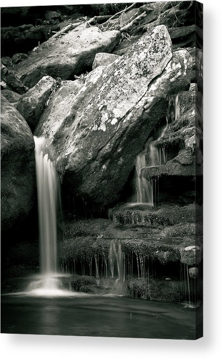 Waterfalls Acrylic Print featuring the photograph Hidden In The Forest by Iris Greenwell