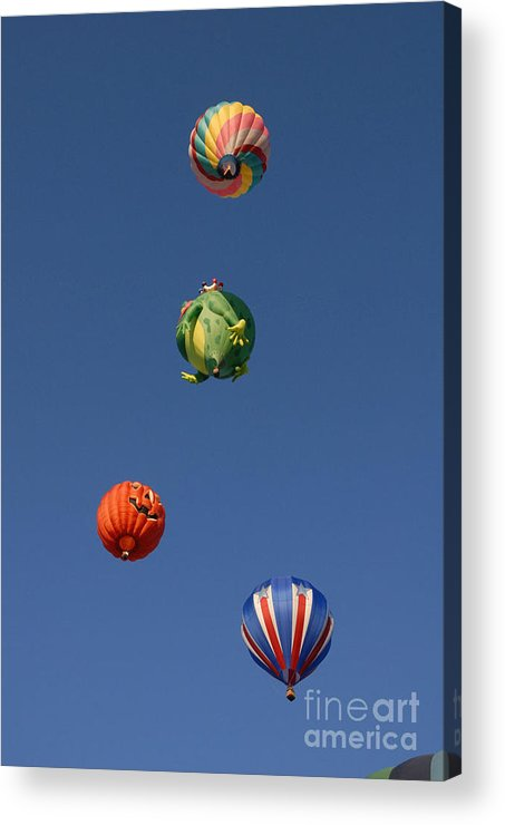 Hot Air Balloon Acrylic Print featuring the photograph Hot Air Rally by Dennis Hammer