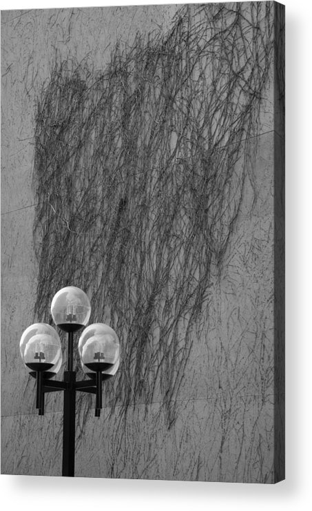 Lamp Acrylic Print featuring the photograph Lamp Post by Jessica Wakefield