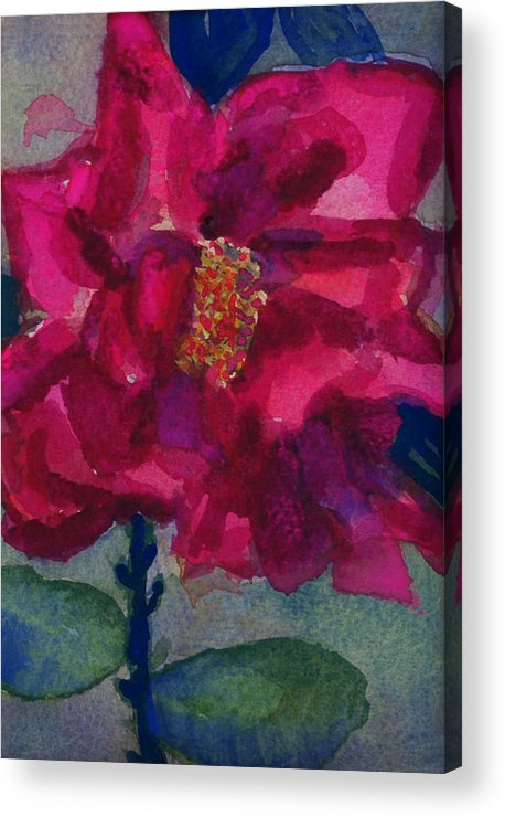 Pinks Acrylic Print featuring the painting Last Rose Of Summer by Helen Musser