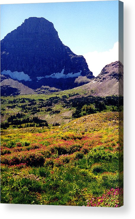 Glacier National Park Acrylic Print featuring the photograph Logans Pass In Glacier National Park by Nancy Mueller