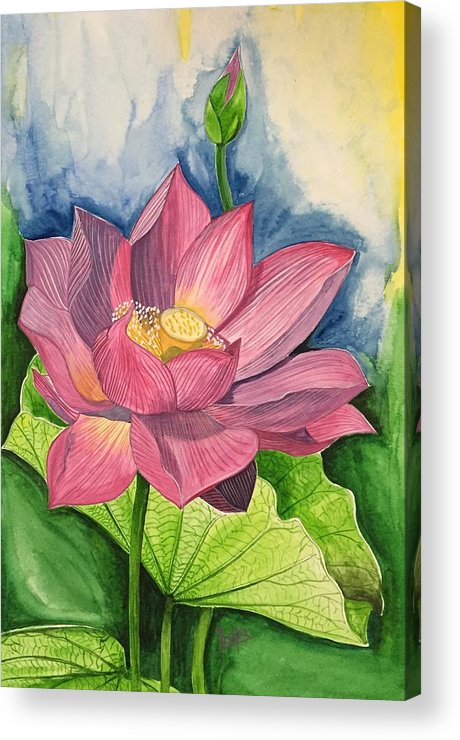 Lotus Flower In Water Color Acrylic Print By Pushpa Sharma