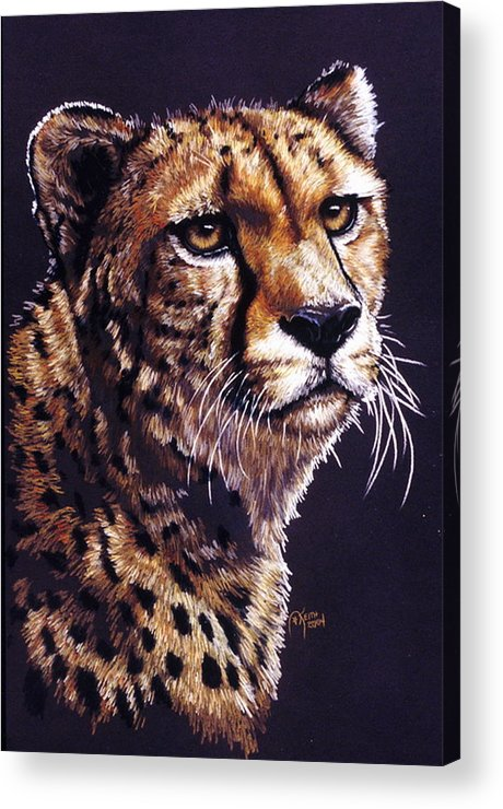 Cheetah Acrylic Print featuring the drawing Movin On by Barbara Keith