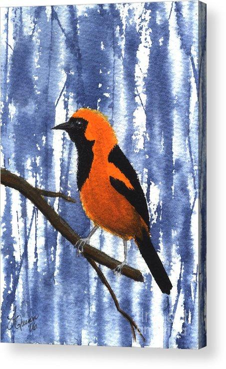 Bird Acrylic Print featuring the painting Orange-headed Oriole by Lynn Quinn