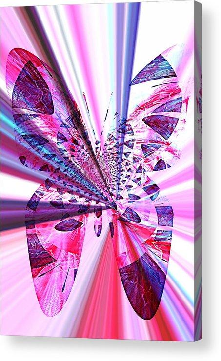 Rays Acrylic Print featuring the photograph Rays Of Butterfly by Amanda Eberly-Kudamik