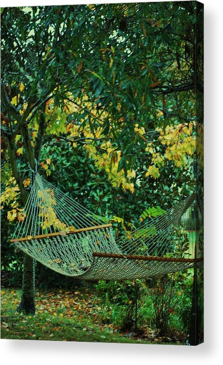 Hammock Acrylic Print featuring the photograph Remnants Of Summer by Trudi Southerland