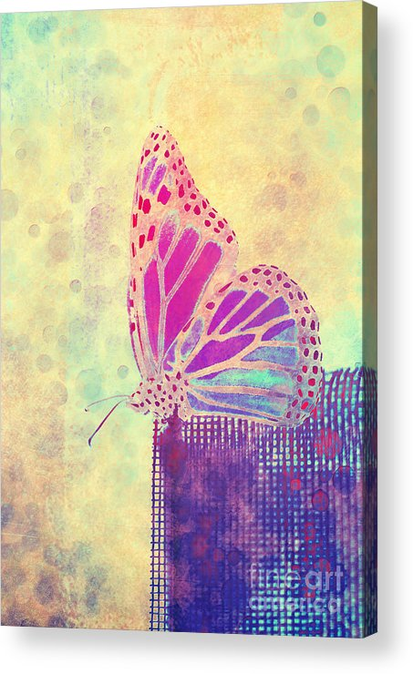 Butterfly Acrylic Print featuring the photograph Reve De Papillon - A1108 by Variance Collections