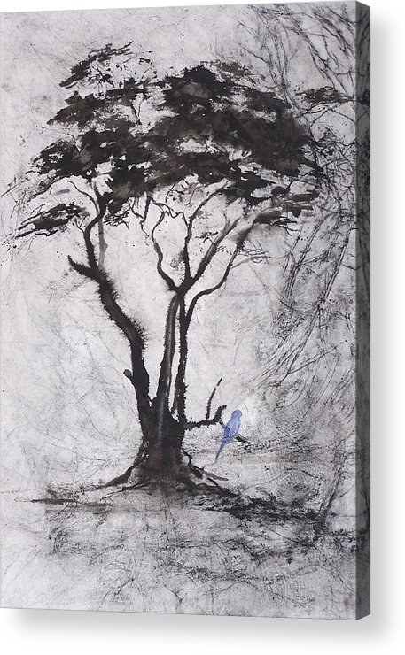 Tree Acrylic Print featuring the painting Scented Pd Acasia by Ilona Petzer