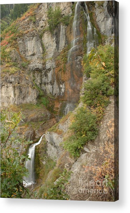 Waterfall Acrylic Print featuring the photograph Stewart Falls In Autumn by Dennis Hammer