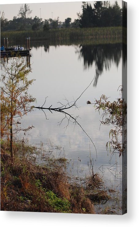 Water Acrylic Print featuring the photograph Stick In The Water by Rob Hans