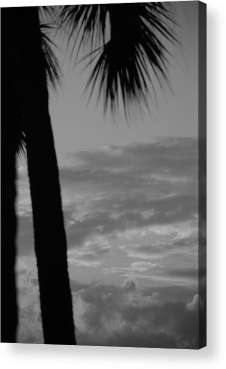 Black And White Acrylic Print featuring the photograph Sunset In Black And White by Rob Hans