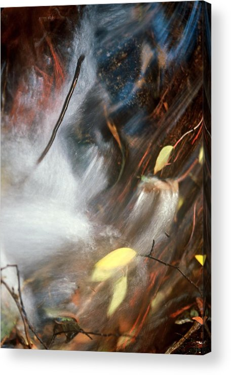 Leaves Acrylic Print featuring the photograph Swept Away by Lynard Stroud
