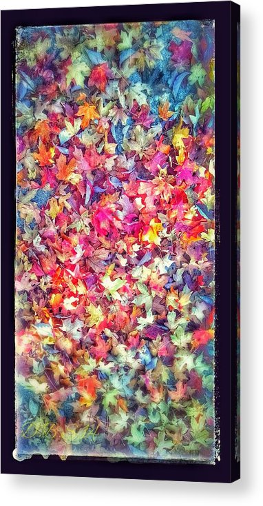 Leaves Acrylic Print featuring the photograph Fall Colors by Dustin Soph