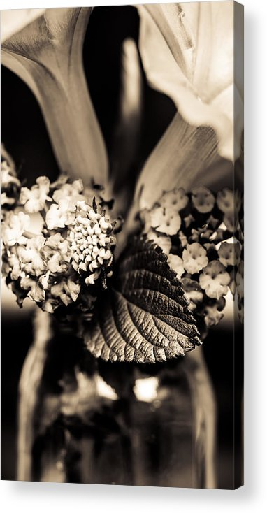 Marco Oliveira Photography Acrylic Print featuring the photograph Flowers In A Jar by Marco Oliveira