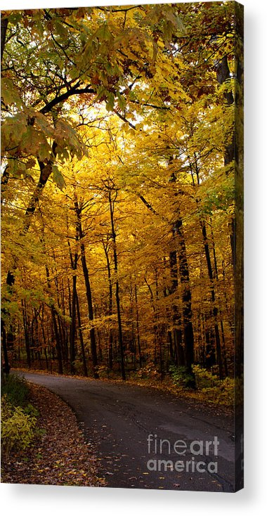 Leaves Acrylic Print featuring the photograph October Road by Valerie Fuqua