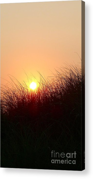 Ocean Acrylic Print featuring the photograph South Beach Dunes At Dawn by Matt Dana
