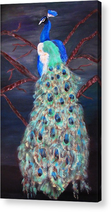 Peacock Acrylic Print featuring the painting Peacock by Mikki Alhart