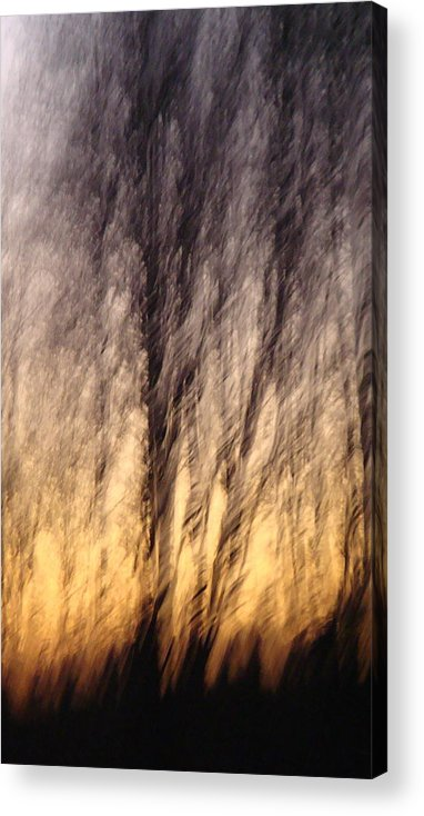 Fine Art Photography Acrylic Print featuring the photograph Ambience by Melody Dawn Germain