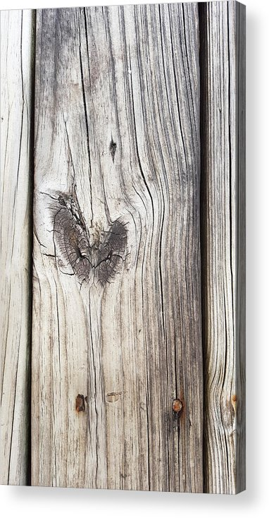 Love Acrylic Print featuring the photograph Heart Of Wood by Ami Brown
