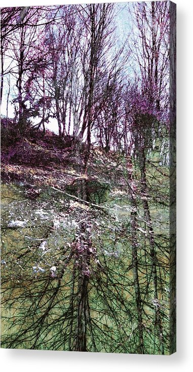 Trees Acrylic Print featuring the photograph Roots by Joanne Elizabeth