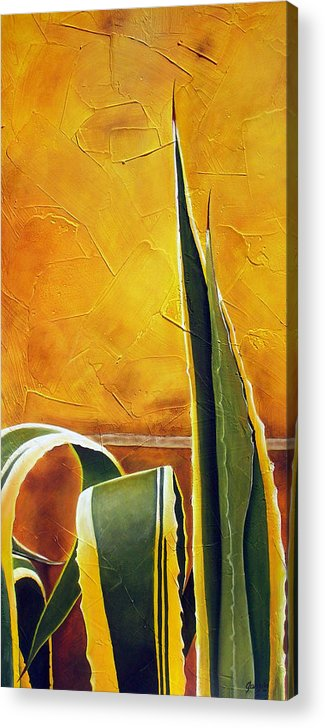 Agave Acrylic Print featuring the painting Agave Americana by Maribel Garzon