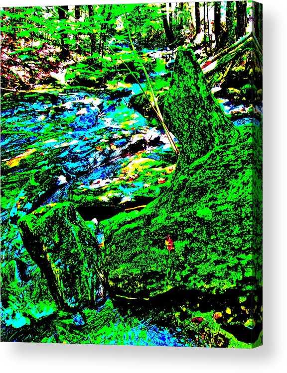 Landscape Acrylic Print featuring the photograph Abstract Brook Bits 56 by George Ramos