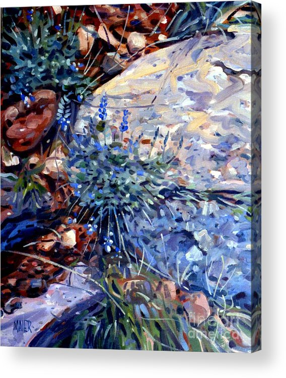 Blue Lupens Acrylic Print featuring the painting Arizona Flora Study by Donald Maier