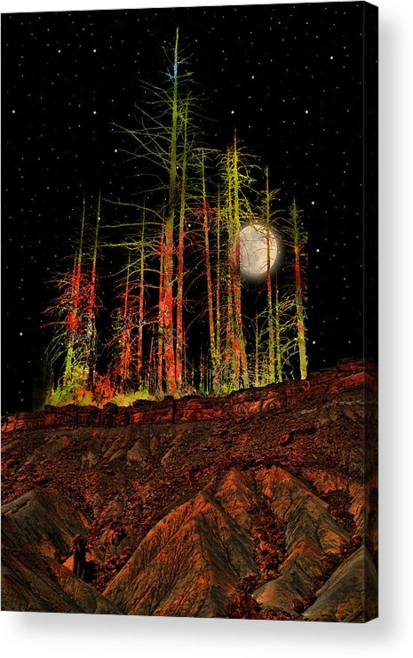 Trees Acrylic Print featuring the photograph 2806 by Peter Holme III