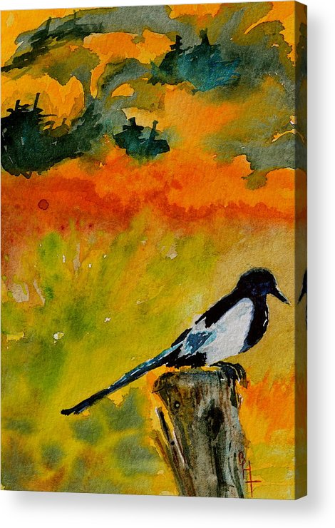 Magpie Acrylic Print featuring the painting Consider by Beverley Harper Tinsley
